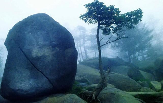 национальный заповедник Дымчатые горы