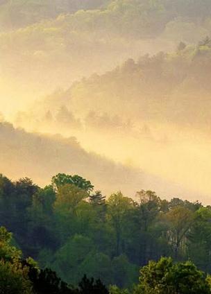 заповедник дымчатые горы