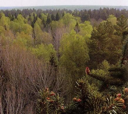 Национальный парк Смольный